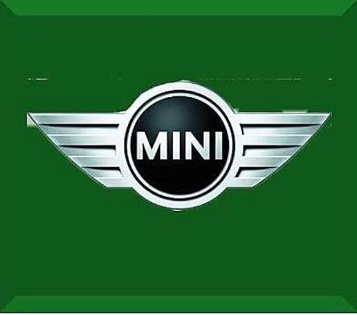 Mini (1)